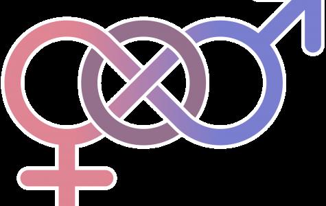The Gender Logs