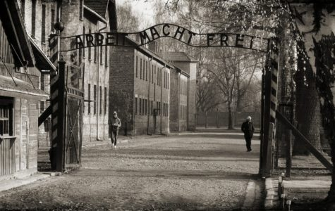 Foundational Knowledge: Auschwitz