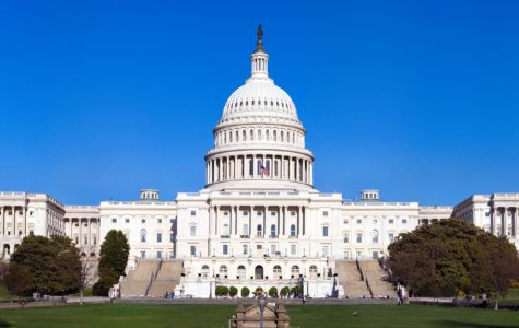 Foundational Knowledge: The Legislative Branch