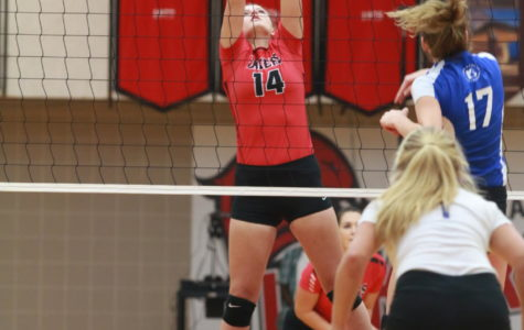 Ambrose finds home on volleyball team