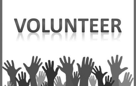Volunteering at LLC