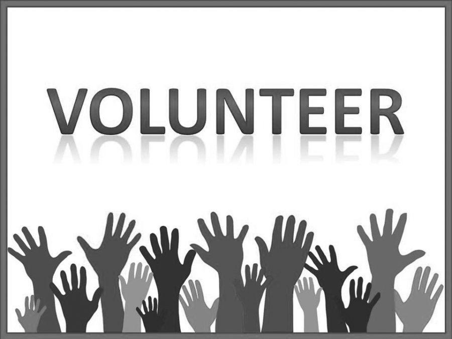 Volunteering+at+LLC