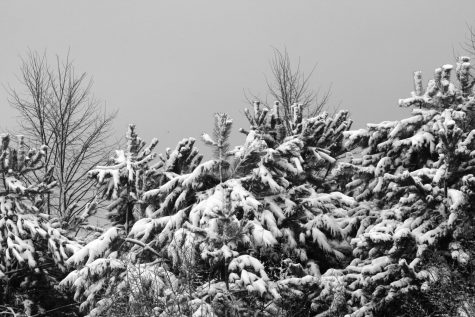 Winter is the worst season ever
