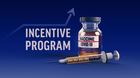 Vaccines and Incentives